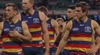 Crows v swans